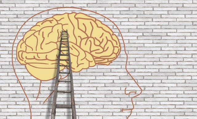 Vortrag: Was passiert bei Trauma und Stress im Gehirn? @ Praxis Dancante, Schriesheim